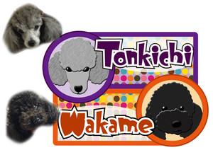 ton_wakame.jpg
